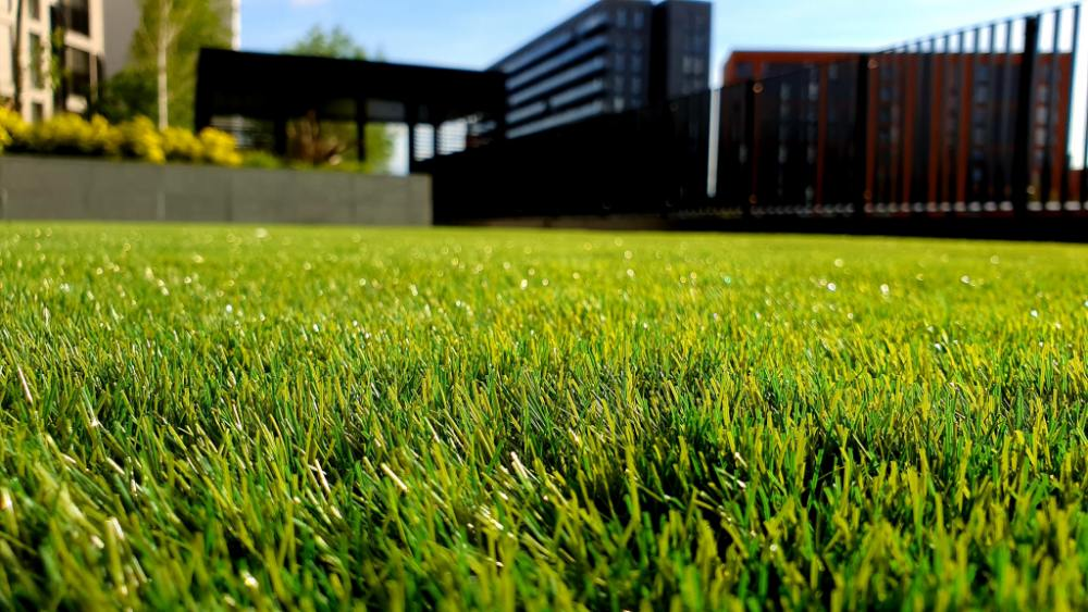 Winter Lawn Mowing Tips