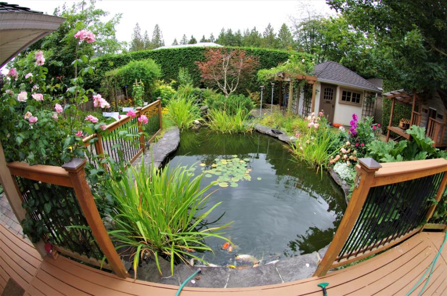 Tips to Select The Best Garden Features For Your Landscape