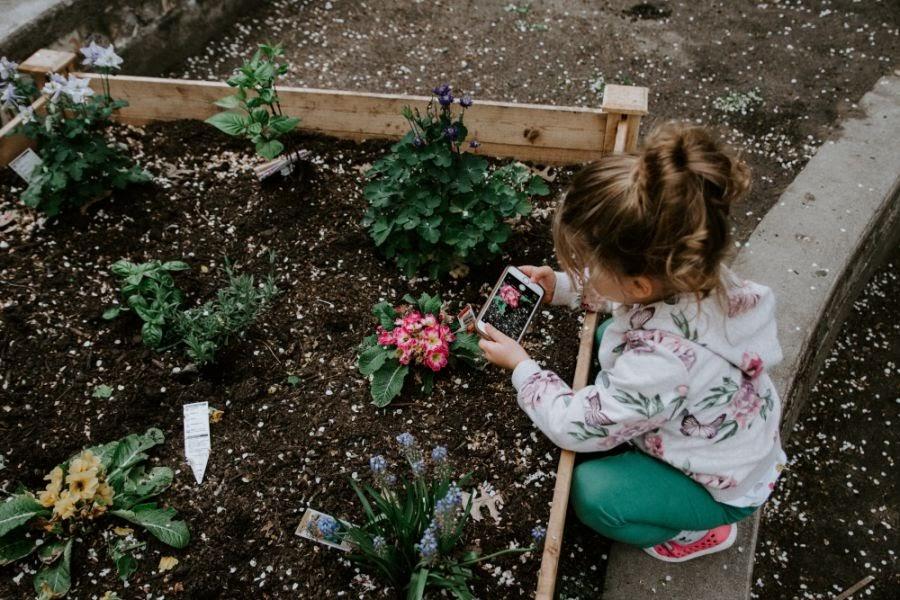 Sensory Garden Benefits