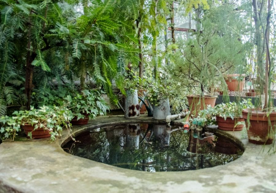 Guide for Choosing The Best Water Features For Your Garden